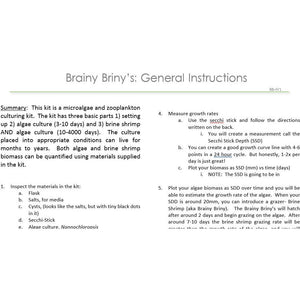 Brainy Briny's:  General Instructions