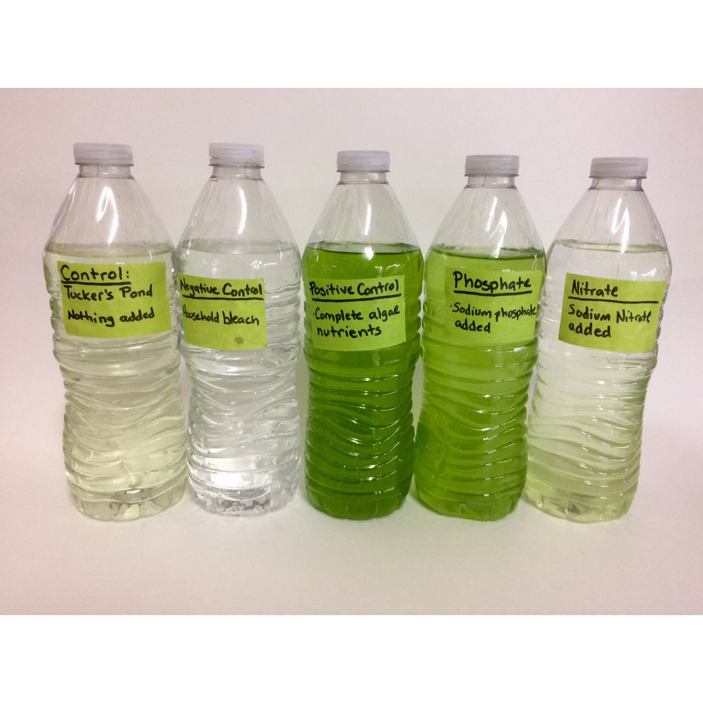 how to stop algae growth in drinking water