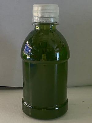 Algae Research Supply: Algae Culture Nannochloropsis