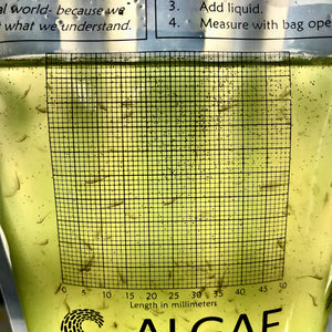 Brainy Briny's in a Beaker Bag:  Algae and Brine Shrimp Growing Kit.