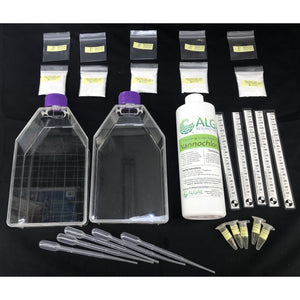 Brainy Briny:  Demo Kit and Basics,  2 demonstration flasks (algae and zooplankton) and 5-basic sets