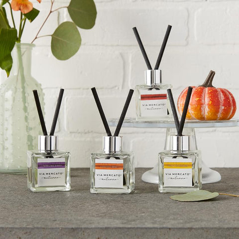 Via Mercato Autunno Holiday Petite Reed Diffuser, Lot of 4