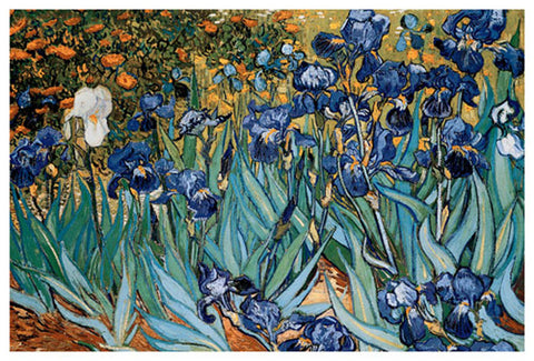 Irises - by Van Gogh - Giclee Archival Fine Art Paper Reproduction