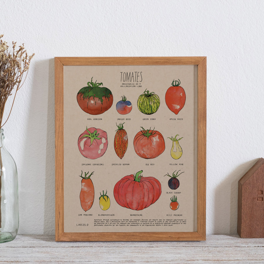 Affiche | Tomates ancestrales