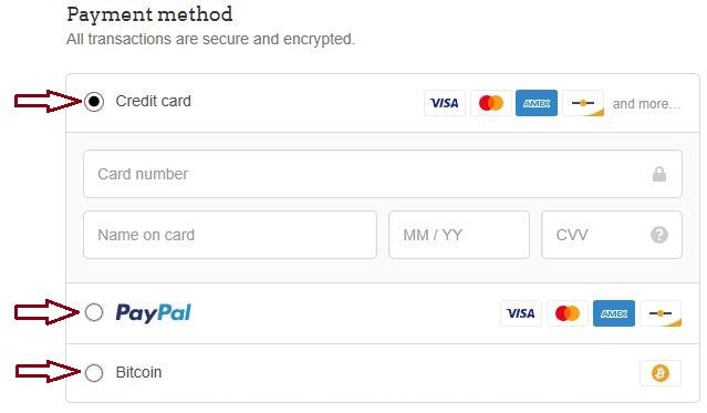 secure payments methods available at checkout