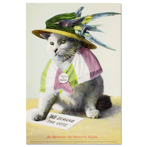 Suffrage Cat Poster