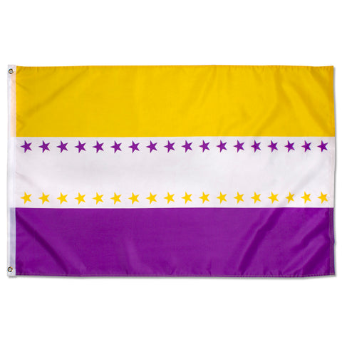 National Woman's Party Suffrage Flag