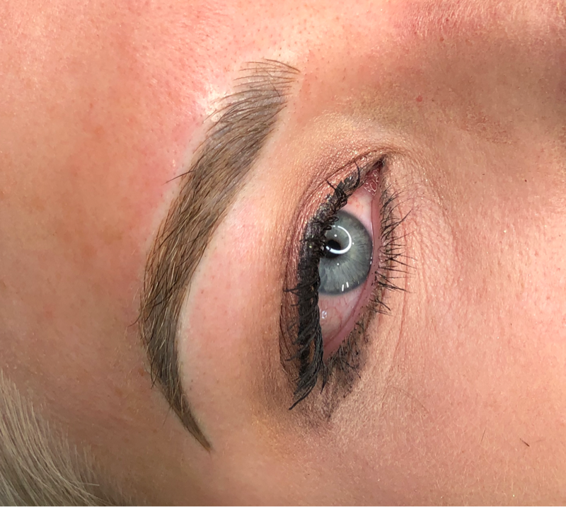 Ashy Brow Color Correction Case Study Microbladed Strokes