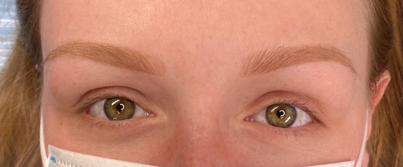 Healed Combination Permanent Makeup Eyebrow Case Study in Toffee