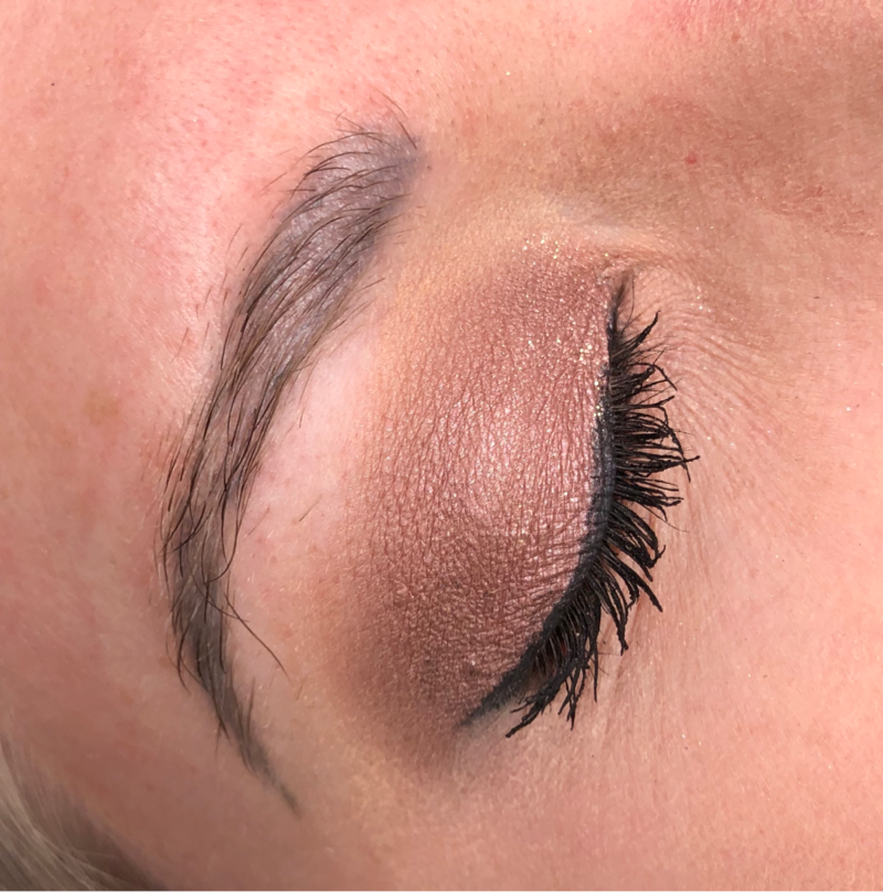 Ashy Brow Case Study Before Image Right Brow