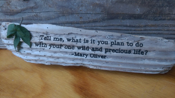 Mary Oliver - Tell me, what is it you plan to do with your one wild and precious life?