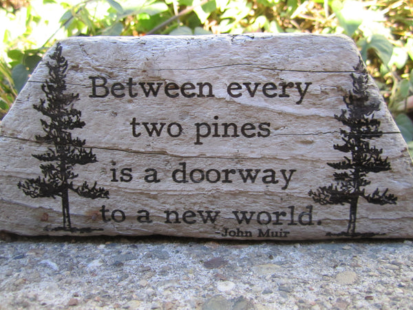 John Muir - Between every two pines is a doorway to a new world