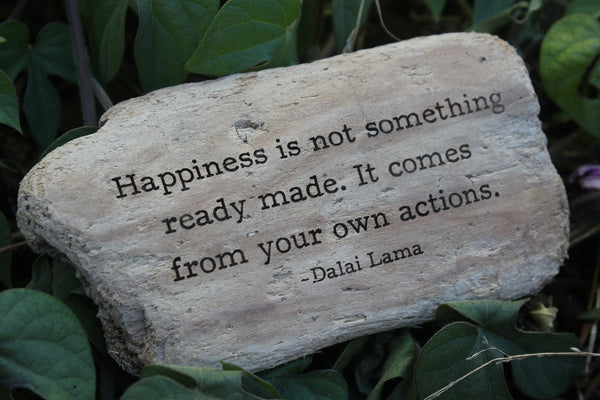 Dalai Lama - Happiness is not something ready made. It comes from your own actions