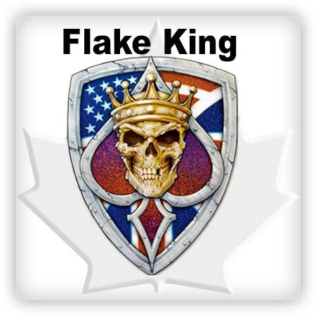 Flake King Metal Flake & Dry Flake Gun