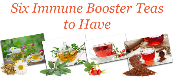Six Immune Booster Teas to Have!