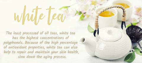 Find a selections of Premium White Tea I Tea Desire