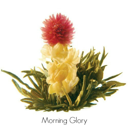 artisan blooming teas - Tea Desire