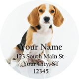 Beagle Personalized Return Address Labels Cute Beagle Puppy Dog - The FinderThings