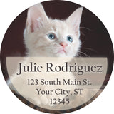 Cat Personalized Return Address Labels White and Grey Kitten on Leopard Fur Blanket - The FinderThings