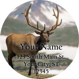 Deer Buck Personalized Return Address Labels Deer in the Country - The FinderThings
