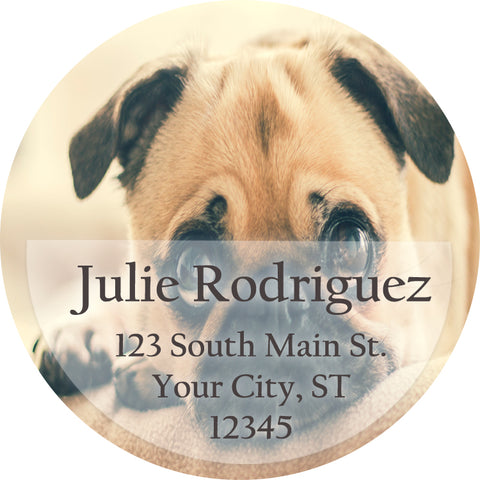 pug dog puppy cute doggy personalized return address labels the