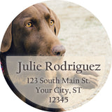 Chocolate Labrador Dog Puppy Lab Personalized Return Address Labels - The FinderThings