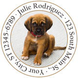 Brown Puppy Cute Ears Dog Labrador Personalized Return Address Labels - The FinderThings