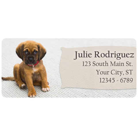 Brown Puppy Cute Ears Dog Labrador Personalized Return Address Labels