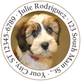Tibet Terrier Dog Puppy Cute Face Personalized Return Address Labels - The FinderThings