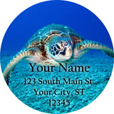 Sea Turtle Personalized Return Address Labels Adorable Swimming Sea Turtle - The FinderThings