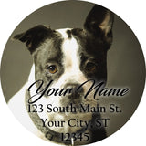 Boston Terrier Personalized Return Address Labels Black and White Dog Terriers - The FinderThings