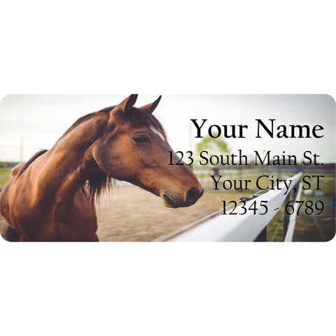 Brown Horse Personalized Return Address Labels Equestrian Horse