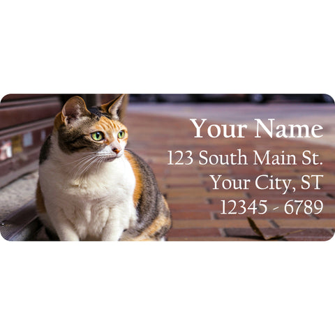 Brown and White Tabby Cat Personalized Return Address Labels - The FinderThings