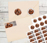 Cocker Spaniel Dog Personalized Return Address Labels Cute Dog Puppy