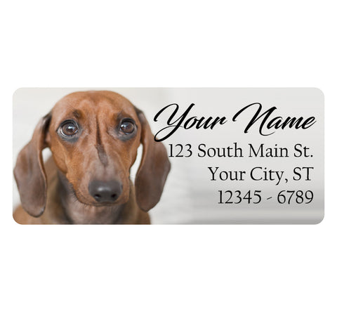 Dachshund Dog Personalized Return Address Labels Cute Dog Puppy - The FinderThings