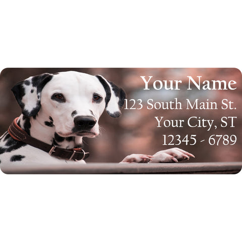 Dalmatian Personalized Return Address Labels Dalmatian Puppy Dog - The FinderThings