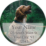 Dog Outdoors Personalized Return Address Labels Cocker Spaniel