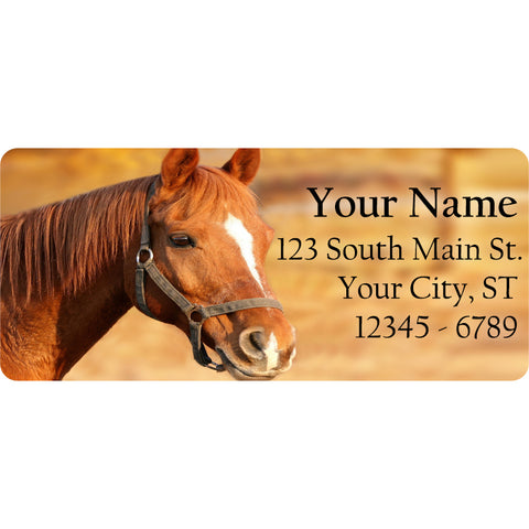 Brown Horse Personalized Return Address Labels Brown and White Horse
