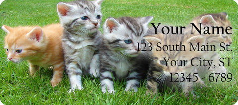 Kittens Return Address Labels Adorable Kittens and Cats in the Grass