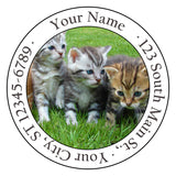 Kittens Return Address Labels Adorable Kittens and Cats in the Grass - The FinderThings