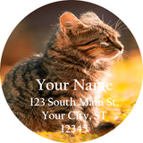 Kitten Cat in a Field Personalized Return Address Labels - The FinderThings