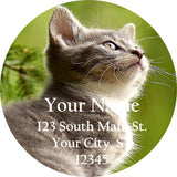 Kitten and Cat Personalized Return Address Labels in the Meadow with Grass - The FinderThings