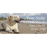White Labrador Return Address Labels Labrador Dog Lab on the Beach - The FinderThings