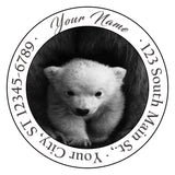 Polar Bear Personalized Return Address Labels Mama and Cub Bears - The FinderThings
