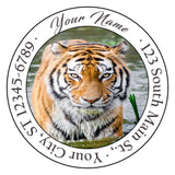 Bengal Tiger Personalized Return Address Labels Tiger in the Grass - The FinderThings