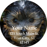 Yorkshire Terrier Yorkie Personalized Return Address Labels Cute Dog - The FinderThings