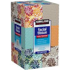 Kirkland Facial Tissue Upright