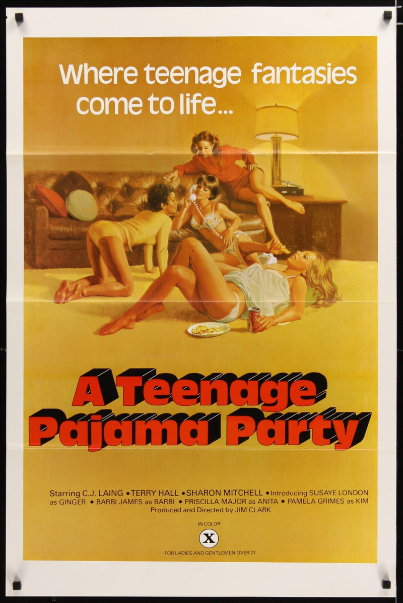 A Teenage Pajama Party 1 Sheet (27x41) Original Vintage Movie Poster