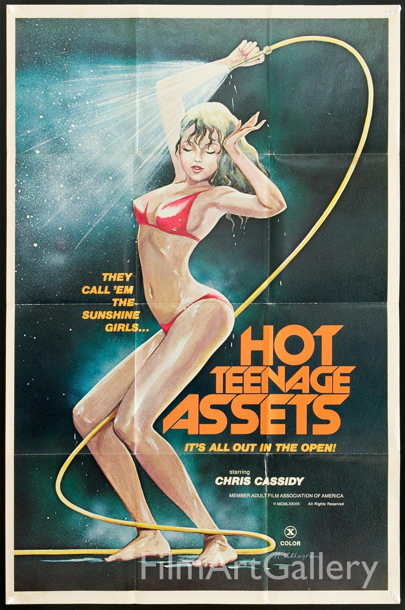 Hot Teenage Assets 1 Sheet (27x41) Original Vintage Movie Poster
