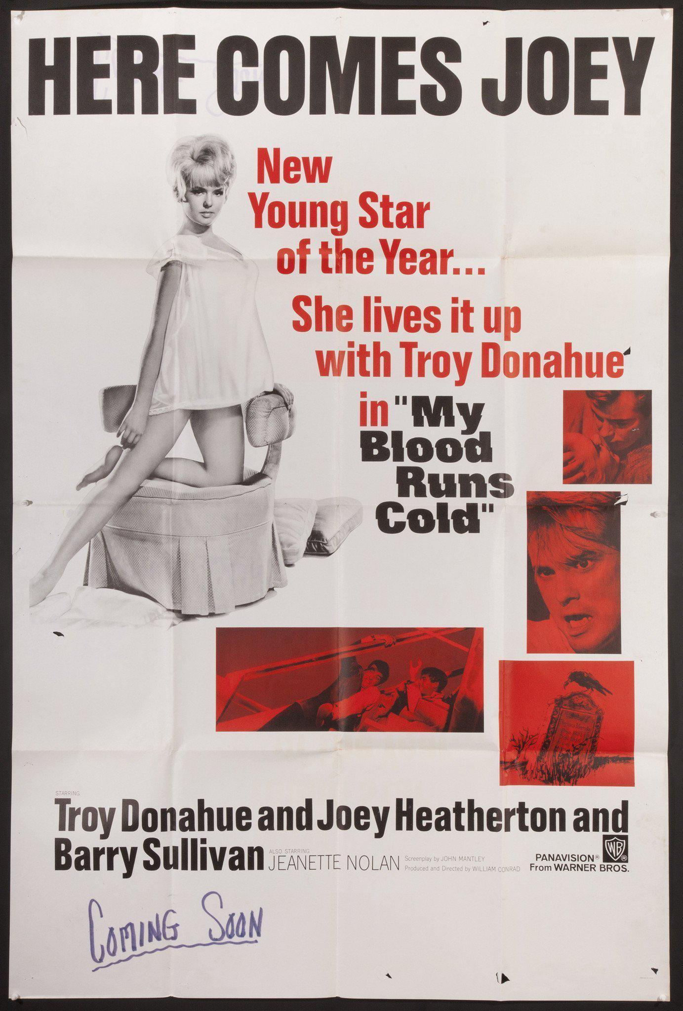 My Blood Runs Cold / Joey Heatherton 40x60 Original Vintage Movie Poster